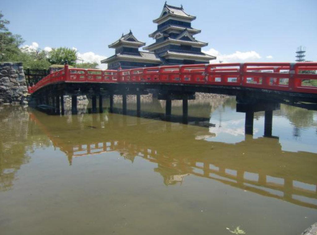 水面の下10センチメートルあたりまで堆積した泥(堀底からの高さは3メートルほどにもなっている。)